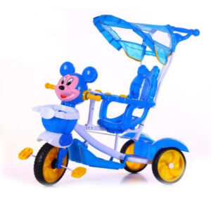 aby-Tricycle-with-sunroof